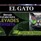 46- Swaruu y el Gato: Esta Realmente Alli? Mensaje 22 Extraterrestre Pleyadiano