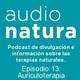 Episodio 13- Auriculoterapia