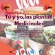 Tu yo y las plantas medicinales, 20 de febrero 2019
