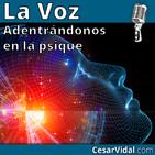Adentrándonos en la psique: Neuropsicología de la inteligencia (3) - 27/11/19