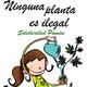 El judici per la marihuana llest per sentència + Última hora sobre la prohibició de l'estèvia (amb Josep Pàmies)