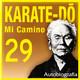 574 | Karate-Do, Mi camino 29x30 (recuerdo de la niñez)