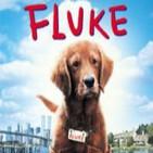 Fluke (1995) Audio Latino [AD]