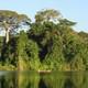 Voces de la Panamazonía, informativo semanal
