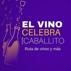 Entrevista a Juan Giacalone, de El Vino Celebra en El Diario de Turismo