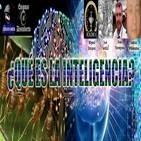 3x15 Tertulia. ¿A qué podemos llamar inteligencia?