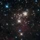 Hijos del Cosmos: El pasado y futuro del ser humano