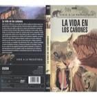 Viaje a la Prehistoria (2de6): La vida en los cañones