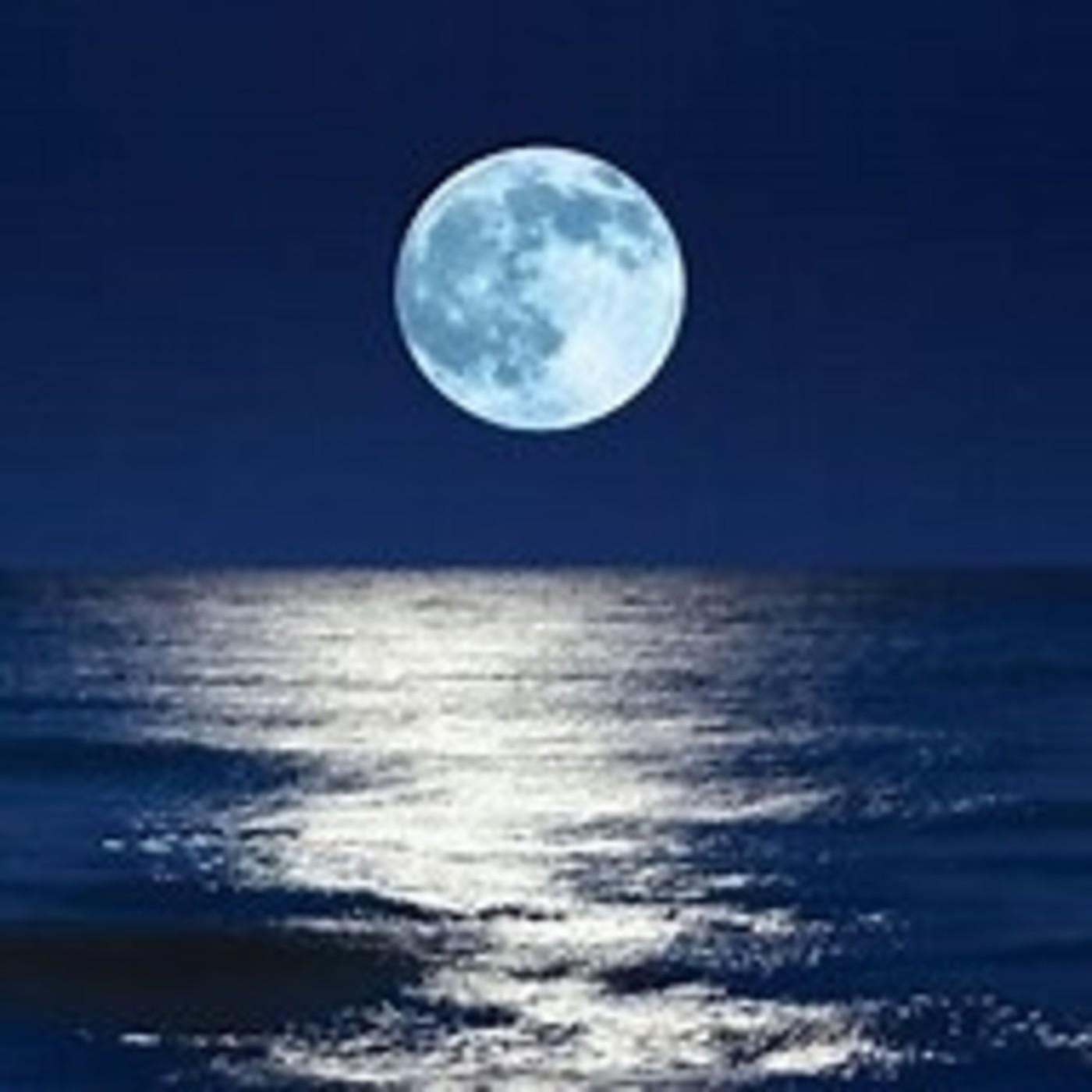 5. Meditación para dormir profundamente - Cuento: El árbol de las preocupaciones