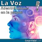 Adentrándonos en la psique: Neuropsicología de la inteligencia (2) - 20/11/19