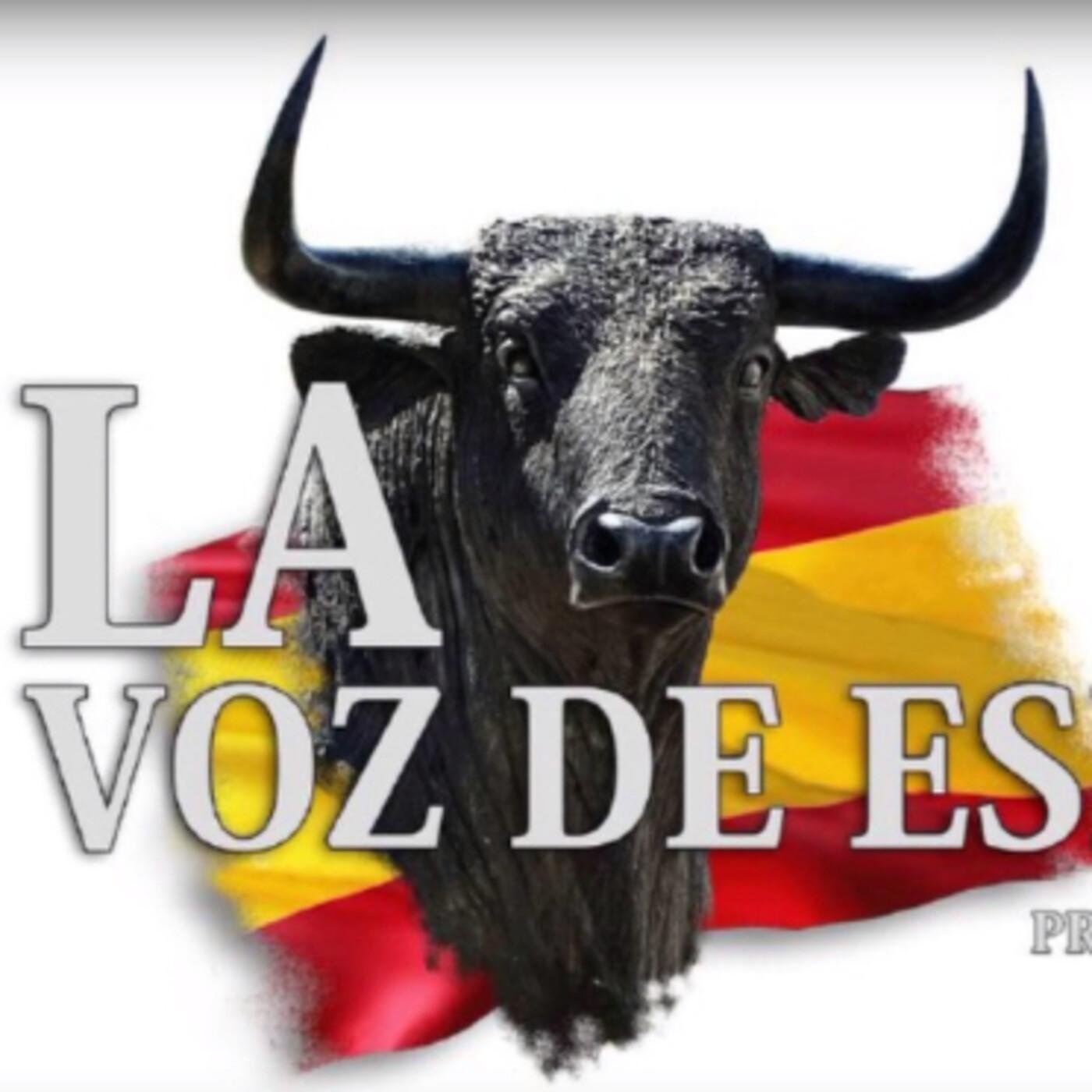 LA VOZ DE ESPAÑA Ed: 205 (29 de Marzo)