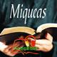 Miqueas 1, 1-16 AudioBiblia