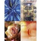 MÚSICA... 3 CDS. REIKI,THE HEALING FLOW (Reiki,el Flujo Sanador ..Guna Sangah) INTO HET WIND (Dentro del viento Joe Bong