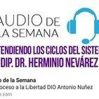 AUDIO DE LA SEMANA 17 - D.I.P, Dr. Herminio Nevárez - Entendiendo los ciclos del sistema