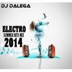 Dj Dalega - Electro Summer Hits Mix 2014