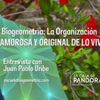 Biogeometría: La Organización Amorosa y Original de lo Vivo - Entrevista con Juan Pablo Uribe