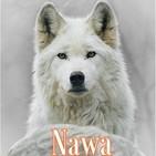 Anuncio NAWA Tarot y Tarot Evolutivo