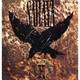 SARAYA -When The Blackbird Sings...1991