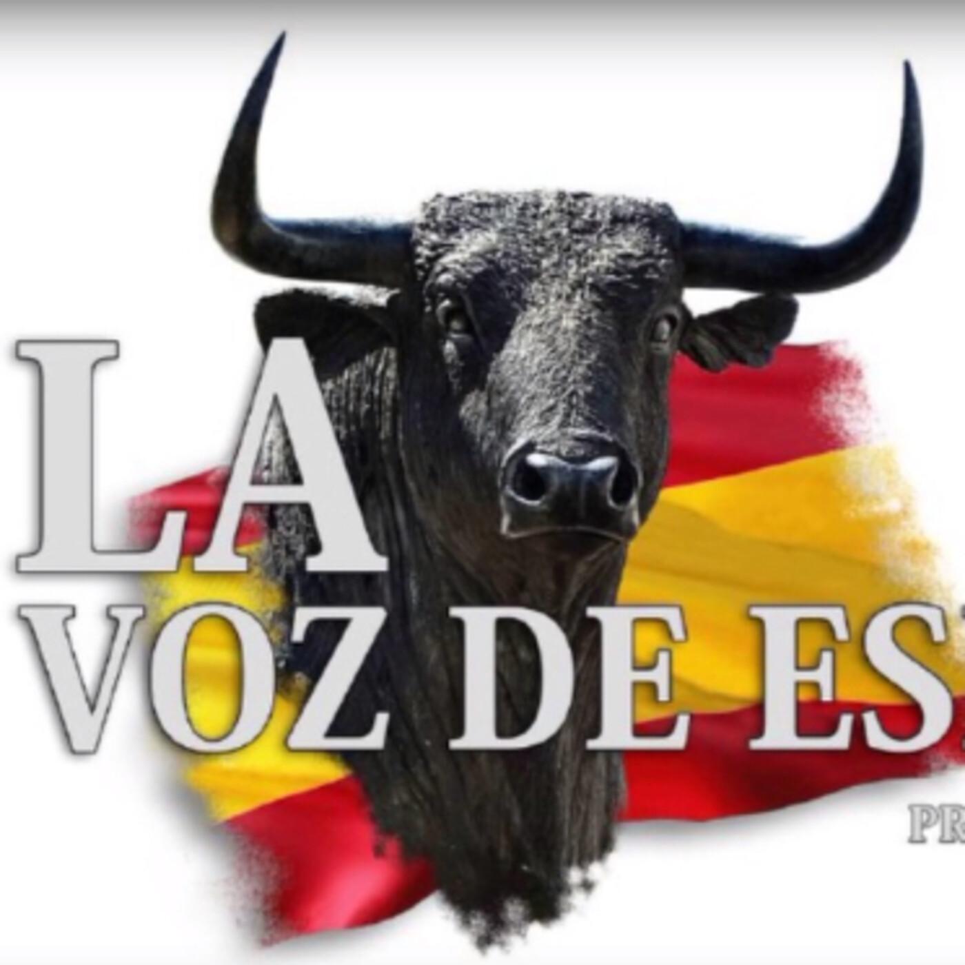 LA VOZ DE ESPAÑA Ed: 243 (10 de Junio)
