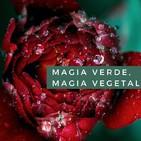 Magia Verde, Magia Vegetal. Cap. 4 Usos mágicos de las plantas