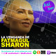 La venganza de Fatmagul Sharon - @AsiPorSerh #AsiPorSerH