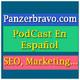 Panzerbravo.com - Podcast 01 - Errores que cometí en uno de mis proyectos SEO