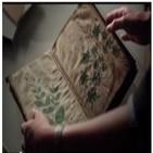 Descifrando El Manuscrito Voynich