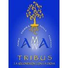 Convocatoria TRIBUS DE AMMA