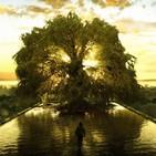 3x27 El árbol de la vida
