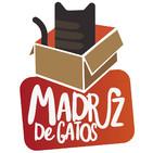 Madriz De Gatos 009 - Barrio de las letras