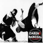CAMINO MARCIAL nº 125 - Carlos García (Shorinji Kempo)