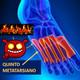 Rock & raul radio locuras : Quinto Metatarsiano, la canción