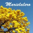 Selección Respuestas del Post 'El Senado Planetario' - Marielalero - 23-9-2014 (Análisis)