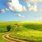 La Historia: Cómo ser fieles hasta el final mas allá de la apariencia