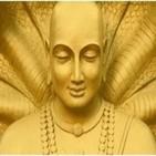 Dhammapada vs.124. Historia de Kukkutamitta