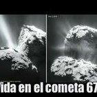 ¿Vida en el cometa 67P?