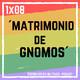 1X08 Matrimonio de Gnomos