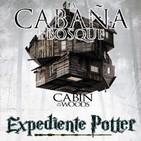 LODE 9x29 La Cabaña en el Bosque (The Cabin in the Woods), Expediente POTTER: Varitas Mágicas