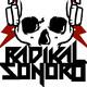 Radikal Sonoro  Episodio 7 Especial festival punk online futuro ke futuro? , entrevista a la organización del festival
