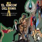 Rincón del Jawa programa 10