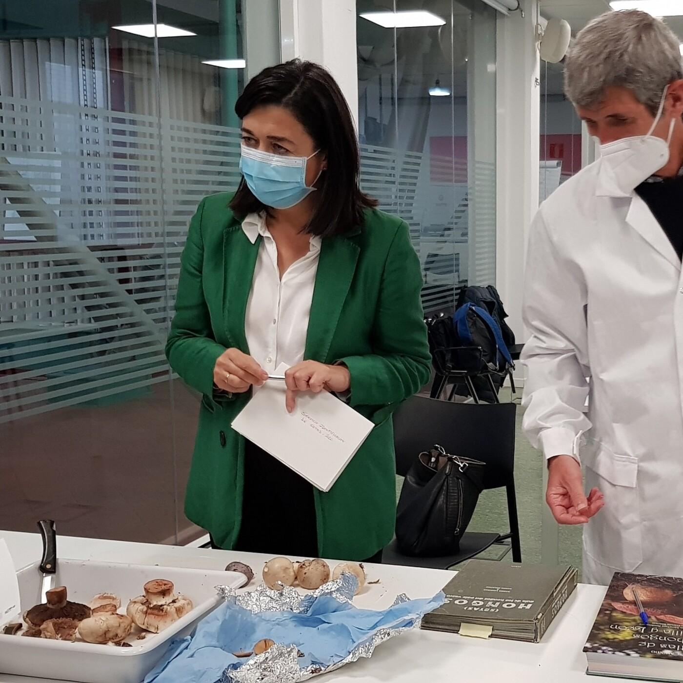 El Ayuntamiento de Bilbao activa el Servicio de Identificación de Setas