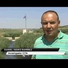 Del Campo a la Mesa - Entrevista a Daniel Isidoro (04/09/2018)