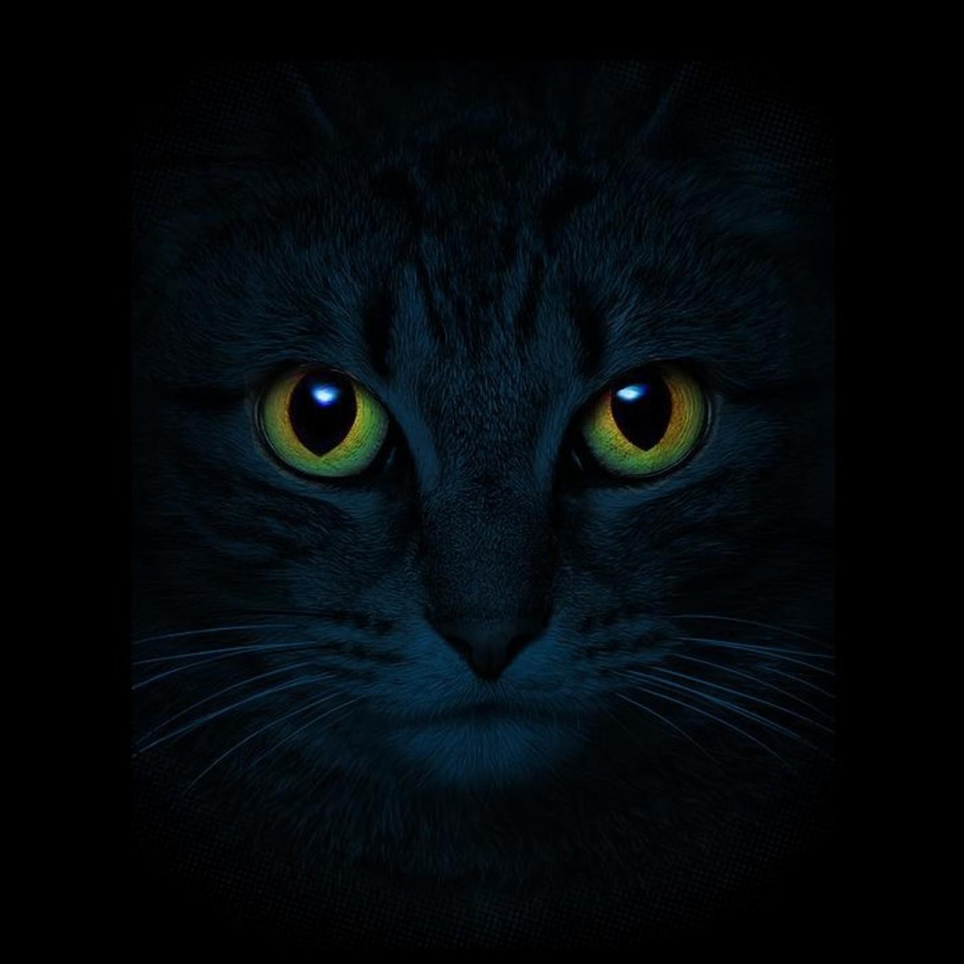 El Gato del Señor Johnson, de Isaac Martín