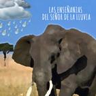 Las enseñanzas del señor de la lluvia