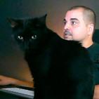 611 | Noticias marciales y un gato mú negro