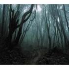 Goblin- Black Forest