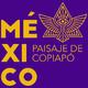 Capsulitas 03 de Historia México Paisaje de Copiapó