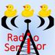 RadioSenior ~ Temporada 4 - Programa 11
