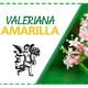 El Ángel de tu Salud - VALERIANA AMARILLA*