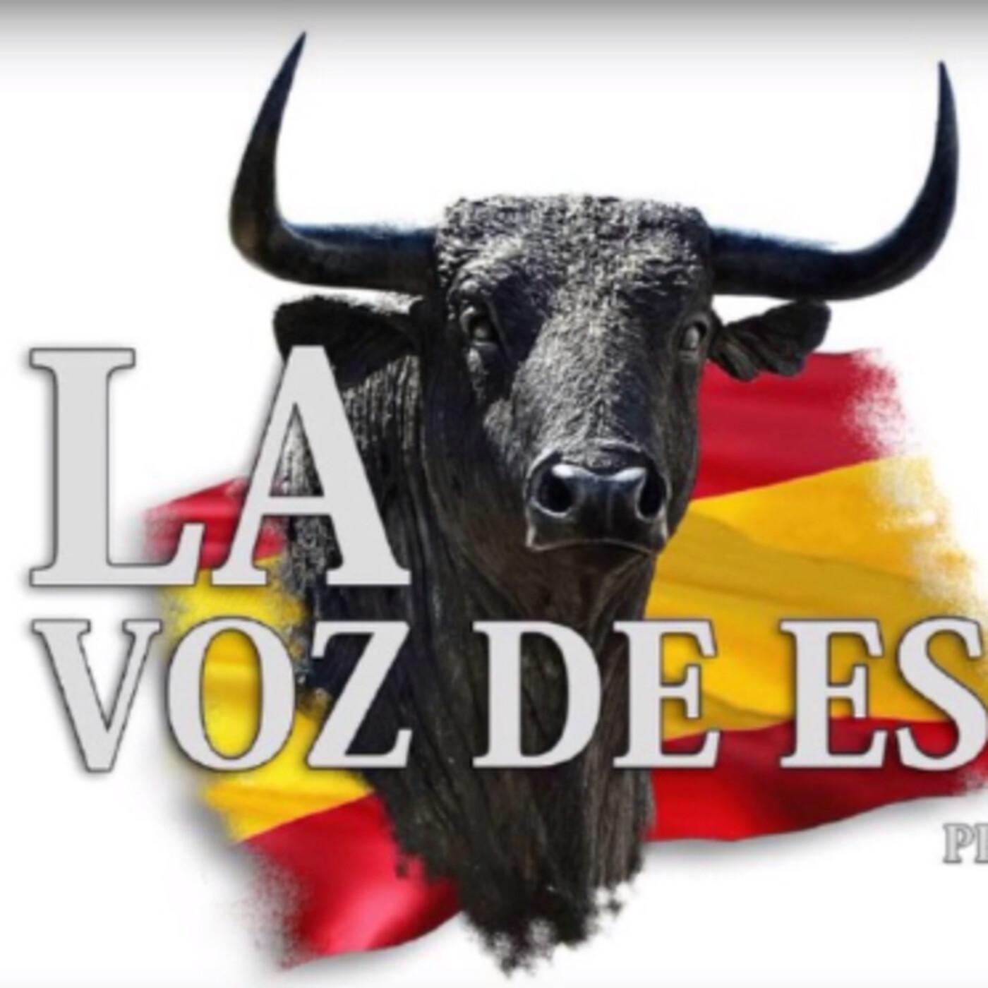LA VOZ DE ESPAÑA Ed: 262 (14 de Julio)